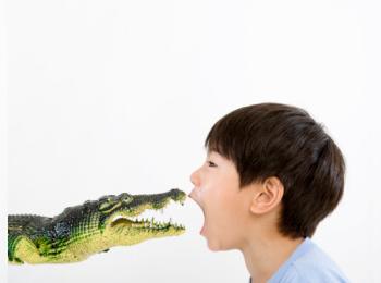 crocodile11.jpg